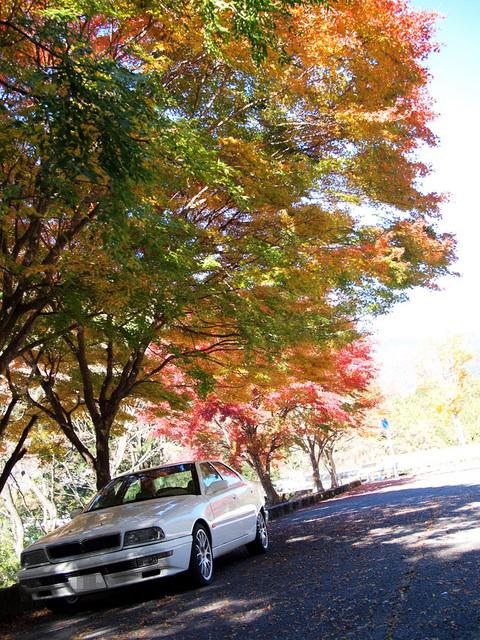 09_quattroporte_tanzawa_20121121_16.jpg