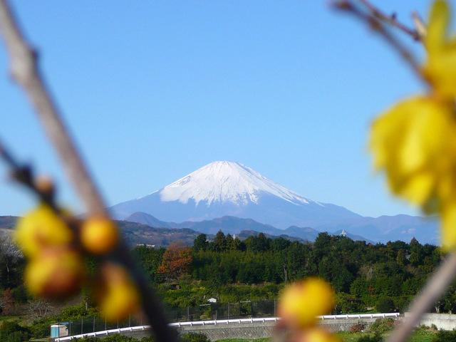 20090101_02_富士山.jpg
