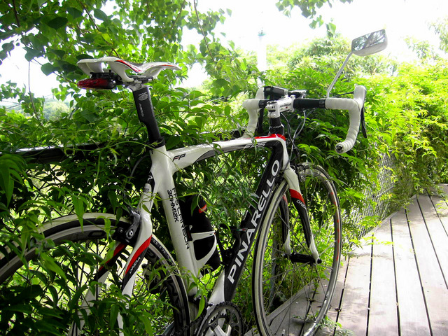 Pinarello_FP5_2008+NESS_XP30_05.jpg